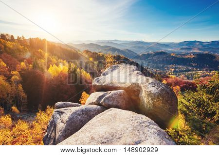 Majestic trees with sunny beams at mountain valley. Dramatic and picturesque morning scene. Red and yellow leaves. Location place Carpathians, Sokilsky ridge. Ukraine, Europe. Beauty world.
