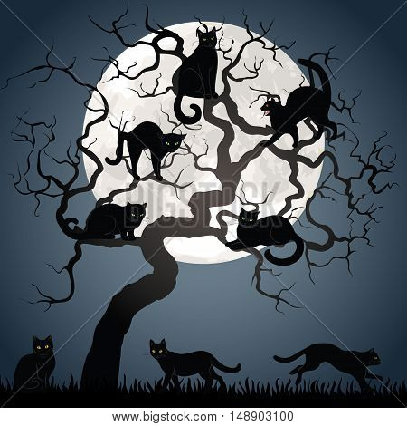 Black cats on tree in night with full moon. Background for Halloween