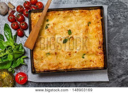 Delicious traditional italian lasagna  with ingredients served on grey metal background, top view