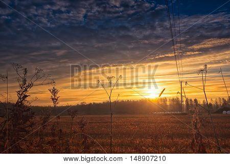 Sunrise On The Autumn Fields
