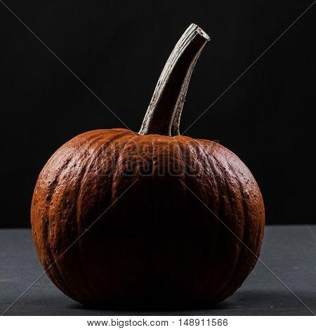 One dark pumpkin isolated on black background