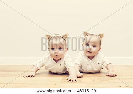 Cute baby twin sisters crawl together on wooden floor wearing funny cat's ears headbands. Vintage