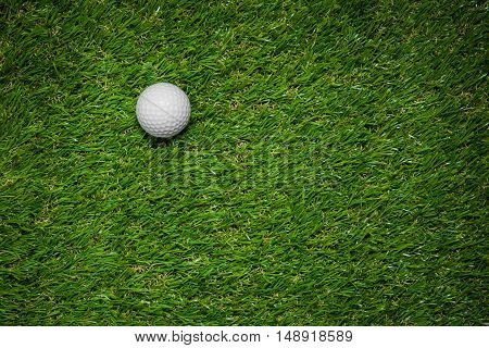 a green grass with a white ball