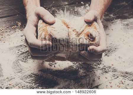 Warm fresh bread. Baking and cooking concept background. Hands carefully hold loaf on rustic wooden table, sprinkled with flour. Stained dirty hands of cook. Soft toning