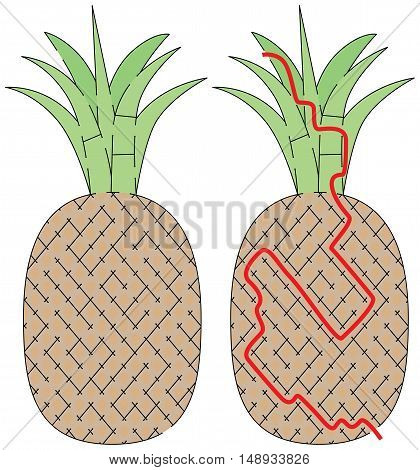 Easy pineapple maze for younger kids with a solution