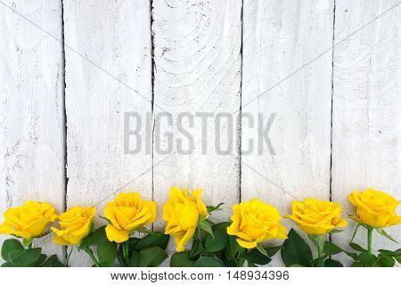 Frame Of Yellow Roses On White Rustic Wooden Background. Valentine's Day And Mother's Day Background