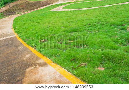 Concrete Walk Way With  Small Grasses.
