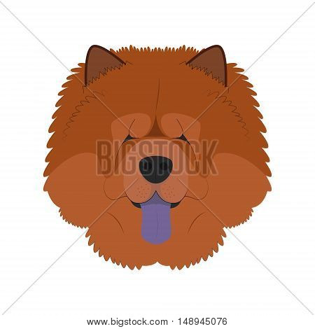 Chow Chow Dog Isolated On White Background Vector Illustration
