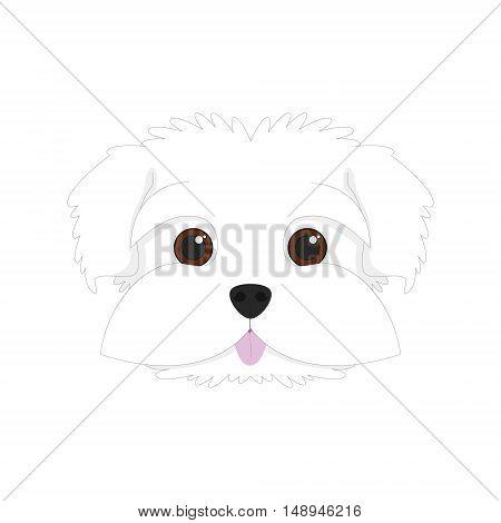 Maltese dog isolated on white background vector illustration