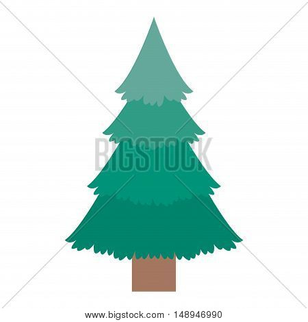 Pine tree icon. Merry Christmas season and decoration theme. Isolated design. Vector illustration