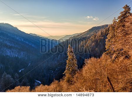Snow Covered Trees At Sunset In Smoky Mountains