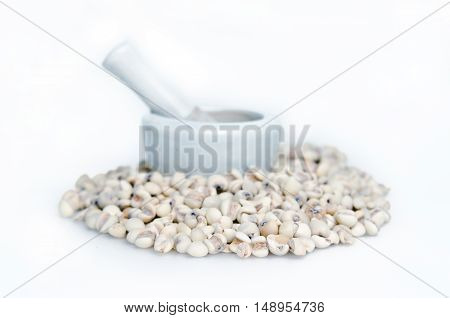Millet Rice Bean, Millet Grains Isolated On White