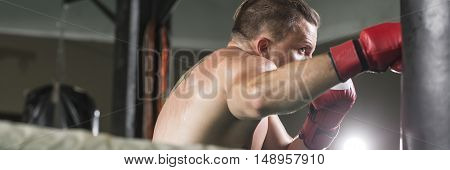 Focused boxer with boxing gloves hit the punching bag