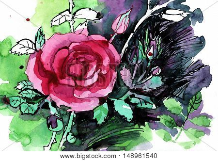 Freehand painted pink rose flower bouquet isolated on white
