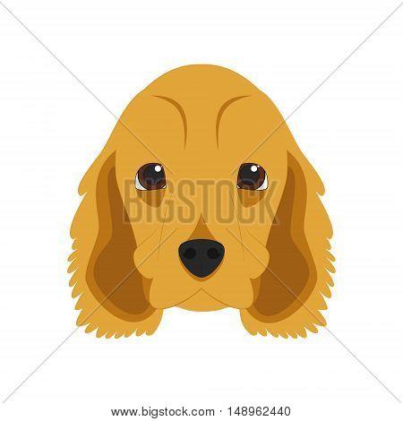 English Cocker Spaniel Dog Isolated On White Background Vector Illustration
