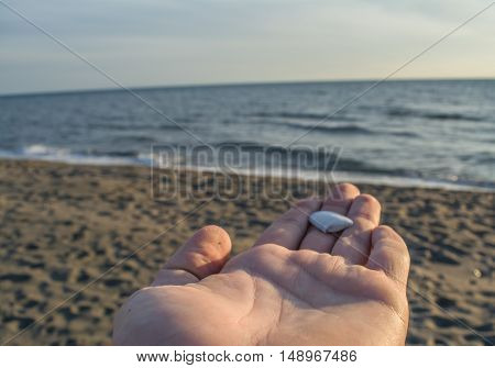 Little shell on the hand and beautiful sandy beach in the background