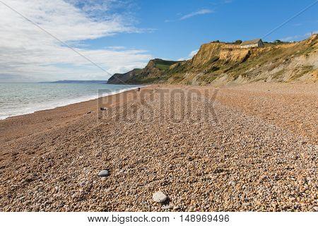 Shingle and pebble beach Eype Dorset England uk Jurassic coast south of Bridport and near West Bay