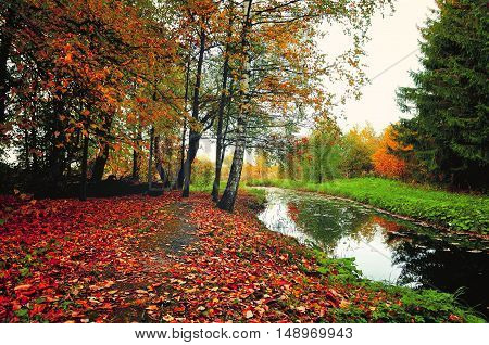 Autumn picturesque landscape in vintage colors-autumn trees and narrow forest river in cloudy weather.Autumn forest landscape-yellowed autumn trees and fallen autumn leaves. Vintage autumn landscape