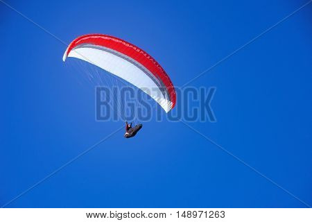 Skydiver flies on the blue sky background