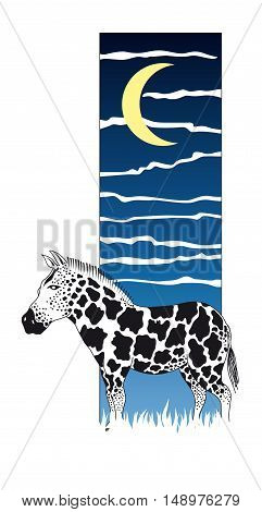 Vector illustration of a spotted zebra over night sky background