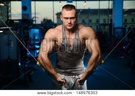 Handsome Muscular Bodybuilder Man Doing Exercises In Gym.