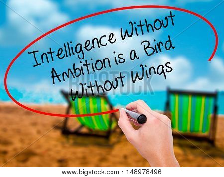 Man Hand Writing Intelligence Without  Ambition Is A Bird  Without Wings With Black Marker On Visual