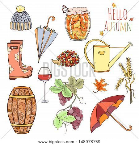 Set of autumn elements can be used for can be used for cards, invitation or website. Design elements of rubber boots, hat, grapes, vine glass, wine cask, jam, watering can, umbrella, jam, spikelet