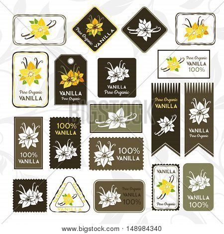 Vanilla pods and flowers. Rectangle stamps and stickers. Vector decorative isolated elements for package design.