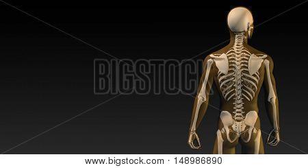 Human Bone Structure Diagram in Orange and Black 3D Illustration Render