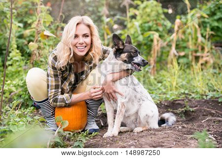 Beautiful young blond woman in checked shirt with her dog working in garden harvesting pumpkins. Autumn nature.