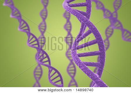 Hélices de ADN púrpuras sobre un fondo verde con poca profundidad DOF