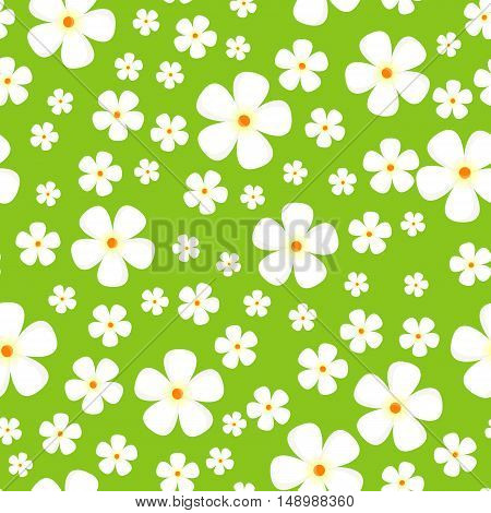 Seamless pattern with meadow Alpic flowers. White flowers isolated on green background. For posters, covers, wrapping papers, wallpapers design. Modern graphic in flat style. Vector illustration