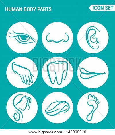 Vector set web icons. Human body parts eyes nose ear teeth mouth head tongue foot. Design of signs symbols on a turquoise background