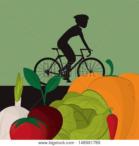 healthy food ingredients and cyclist  icons image  vector illustration