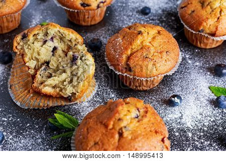 Homemade Blueberry Muffins with powdered sugar, fresh berries