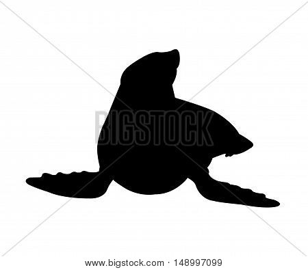 Sea Lion Silhouette on White Background. Isolated vector illustration animal theme.