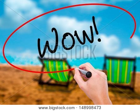 Man Hand Writing Wow! With Black Marker On Visual Screen