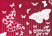 illustration with tropical butterfly background