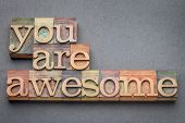 you are awesome word abstract in letterpress wood type blocks against gray slate stone poster