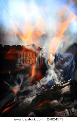 Burning Firewood
