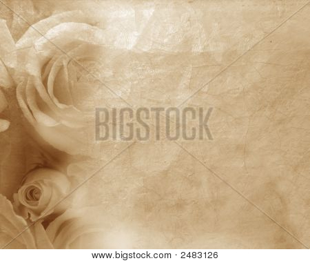 Painting In Sepia With  Rose Texture Flowers