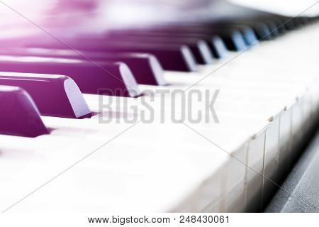 Side View Of Piano Keys