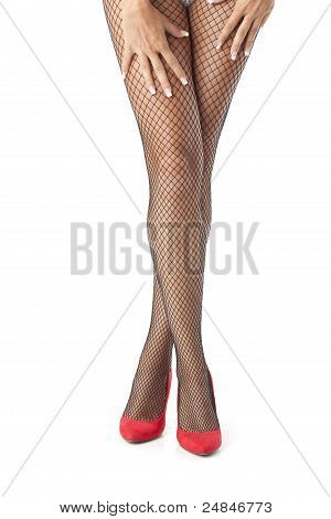 Sexy Legs In Fishnet Stocking And Hands