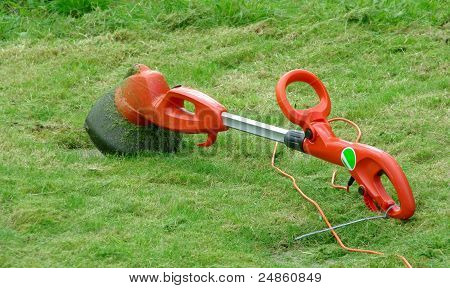 Lawn mower strimmer