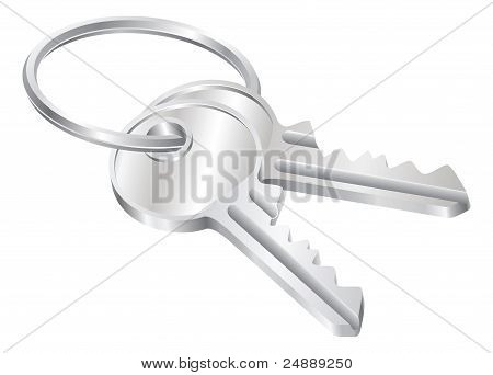 Two Keys On A Keyring Illustration