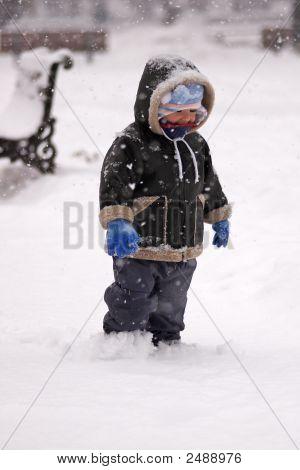 Boy In A Snowstorm