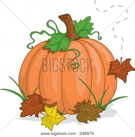 Fall Pumpkin