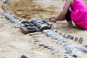 Children Are Learning History Dinosaur, Excavating Dinosaur Fossils Simulation In The Park. poster