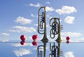 picture of music instrument  - retro brass musical instruments on mirror and apples - JPG