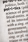 Dictionary Series - Politics: Politics